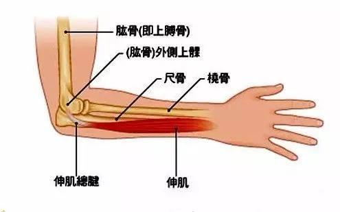 重庆龙脊运动康复中心运动损伤